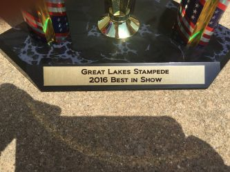 Best in show trophy